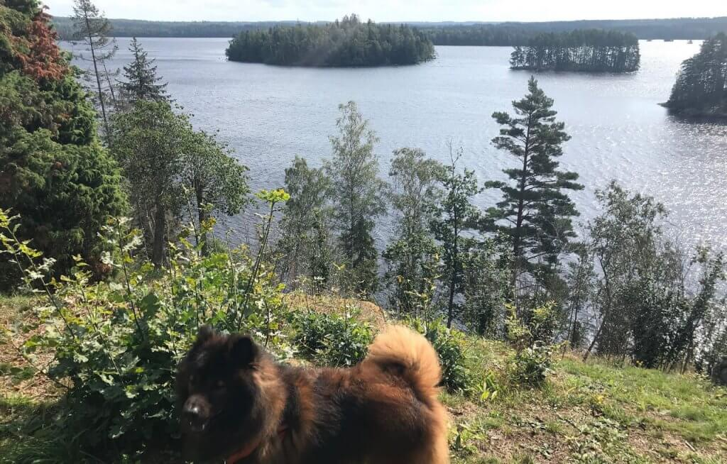 Högakulls naturreservat