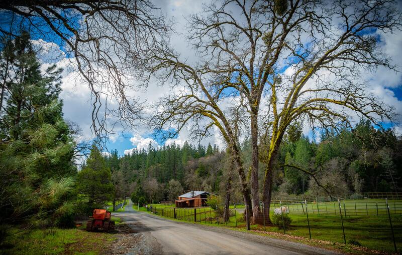 Flytta till landet och njut av landsbygden